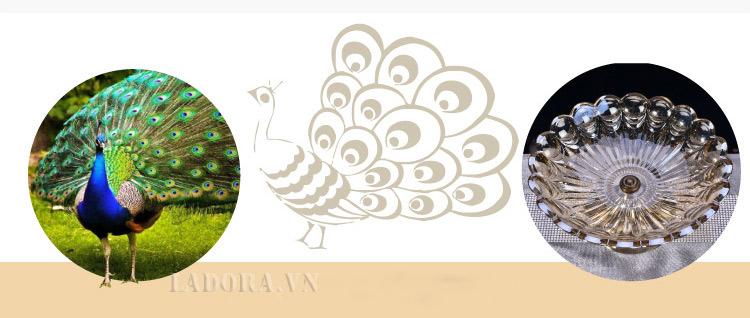 đĩa trái cây mô tả con chim công quý phái tại ladora shop