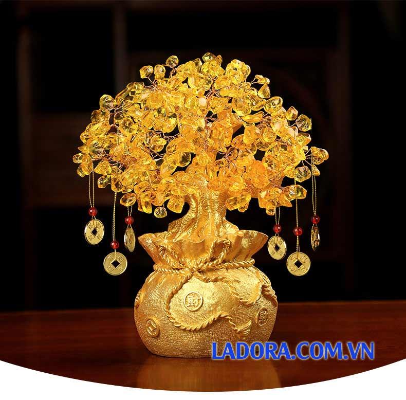 quà tặng nhân ngày khai trương cửa hàng với cây tiền vàng tài lộc tại ladora shop